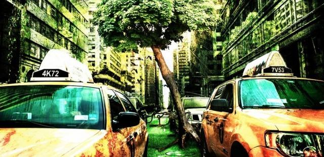 Штраф за парковку на газоне в 2021 году
