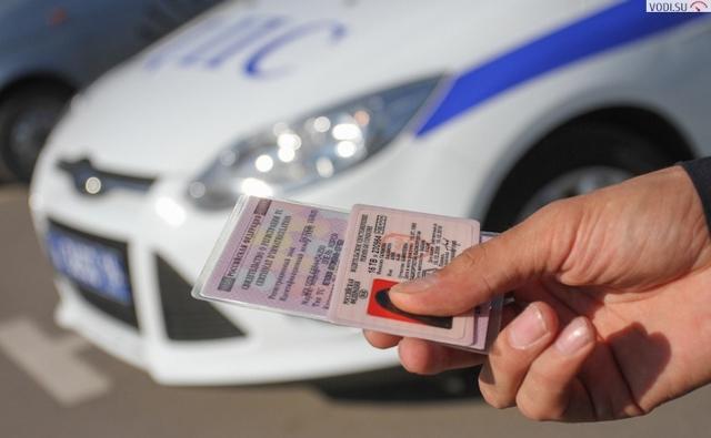 Как проверить водительские права по базе ГИБДД?
