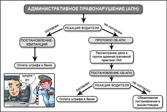 Протокол ГИБДД об административном правонарушении
